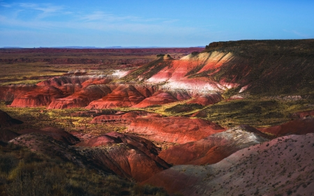The Badlands of The Petrified Forest, Arizona