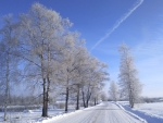 Winter Road in Latvia