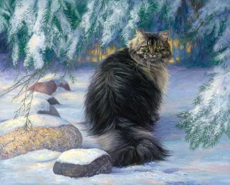 Cat in the Forest - forest, tree, cat, snow