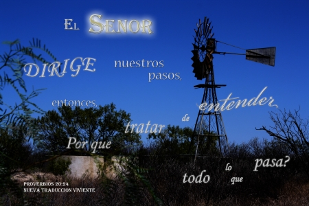 El Senor Dirige Nuestros Pasos - stock tank, windmill, bushes, water, Bible, night
