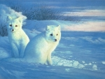 Polar Foxes