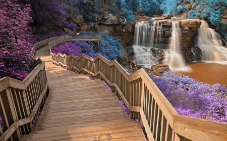 Blackwater Falls, West Virginia - usa, wooden, rocks, stones, path, trees