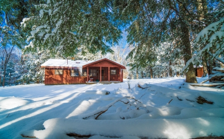 Canaan Valley, West Virginia - cabin, trees, snow, winter, usa
