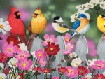 Birds and cosmos flowers
