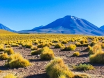 A bright and colorful alien landscape out in Chile's Atacama Desert