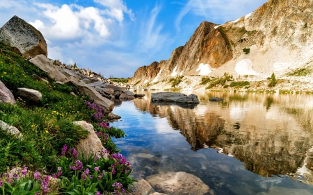 Mountain wildflowers - wildflowers, beautiful, spring, sky, rocks, grass, creek, mountain, cliffs, summer, reflections