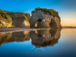 Elephant Rock, Tongaporutu Beach, New Zealand
