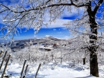 beautiful winter scene 1