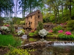 Water mill in spring
