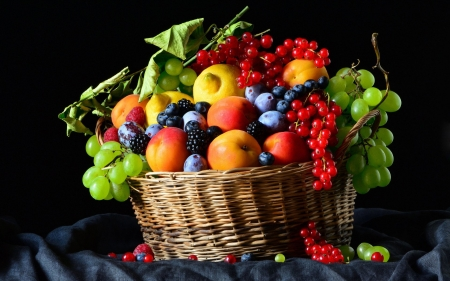 Fruit Basket - Fruit, eat, food, Basket