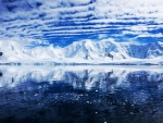 Summer glass in the Antarctic Peninsula