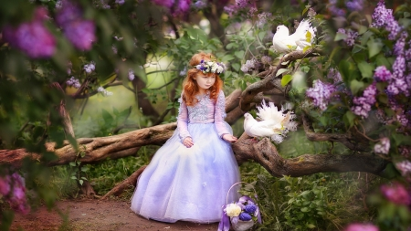 Springtime coming - flowers, doves, lilacs, girl