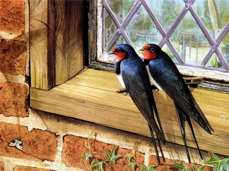Swallows on the Window - painting, birds, swallows, window