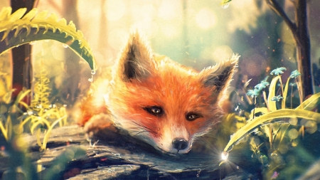 Fox in the spring morning dew - wild, painting, wildlife, spring, red fox, animals, art, dew, cute, fox, wallpaper
