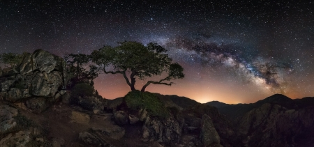 starry night - hills, rocks, trees, milkyway, space