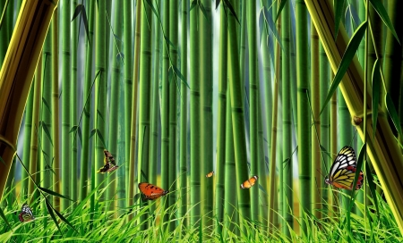 Bamboo forest - forest, spring, butterflies, bamboo