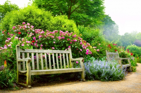 Bench in spring park - flowers, garden, bench, spring, park, roses, rest, greenery, beautiful, bush, walk