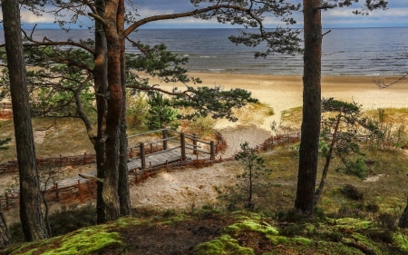 Beach in Latvia - beach, Latvia, trees, sea, path