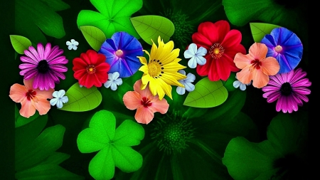 Flowers - blossoms, petals, leaf, plants, colors