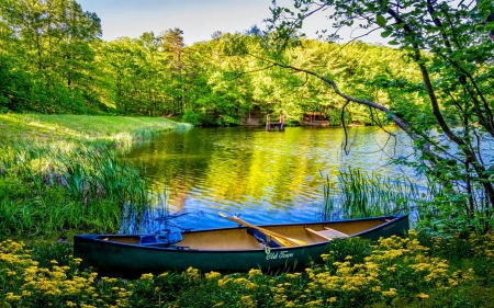 Canoe in Wildflowers at the Lake - trees, reflections, wilderness, boat, water, flowers
