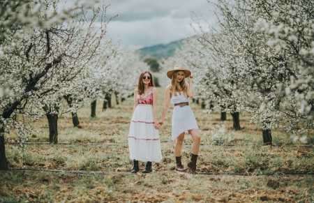 Almond Tree Orchard - hats, blondes, cowgirls, brunettes, boots, trees
