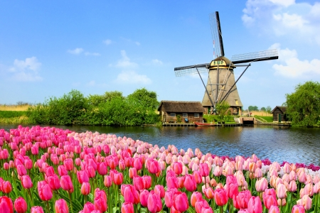 Holland windmill - beautiful, spring, tulips, Netherland, windmill, mill, sky, lake, Holland, serenity, flowers