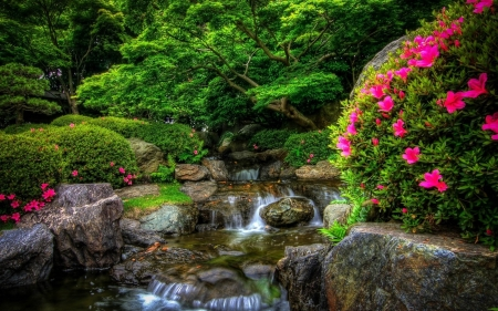 Garden - garden, flowers, small waterfall, park