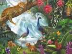 Peacocks and leopards by Steve Crisp