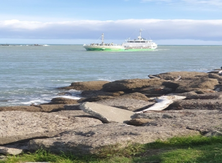 grain ship - rocks, river, ship, sea, new zealand