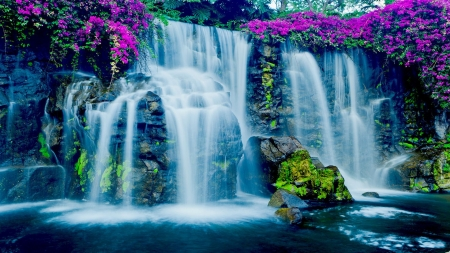 Blue Waterfall in Hawaii - flowers, cascades, river, usa, rocks