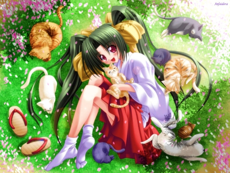 Cats Lover Other Anime Background Wallpapers On Desktop Nexus Image 260209