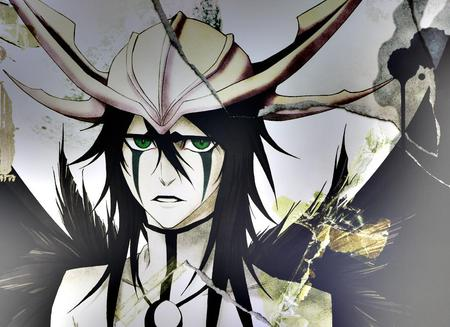 Ulquiorra Cifer - bleach, cifer, ulquiorra