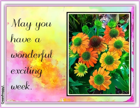 EXCITING WEEK - WEEK, COMMENT, CARD, EXCITING