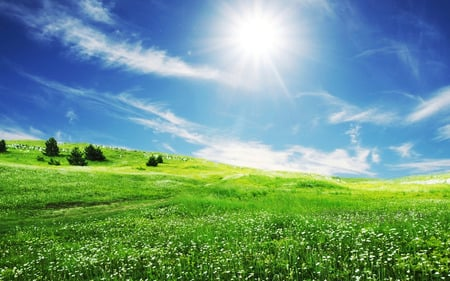 Spring Sun - fields, grass, skies, blue, sky, white clouds, nature, sun, spring