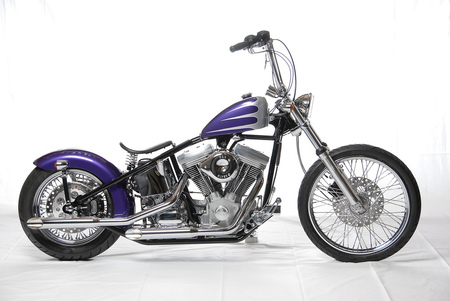 Purple and silver harley with a solo seat - harley davidson, motorcycle