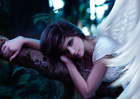 Beautiful Angel - beauty, lovely, sweet, dreamer, lips, forest, hd, white, pretty, wings, model, hair, abstract, beautiful, cute, feather, cg, gorgeous, people, fantasy, face, nice, angel, eyes, alone, woman, wing, girl, tree