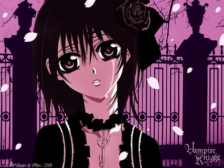 Yuuki Cross - vampire, vampire knight, anime college, anime
