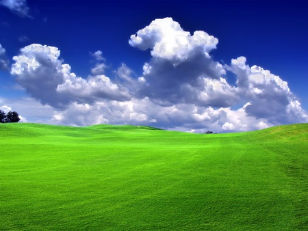 Bliss Like - customized, grass, beautiful, sky, bliss, grasslands, nice, cool, green, nature, fields, like, other, blue