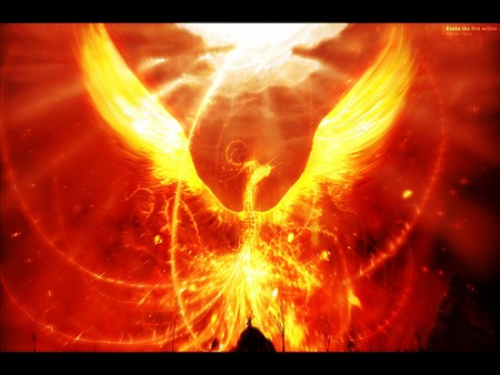 phoenix- the rebirth - fantasy, phoenix, magic, abstract, myths