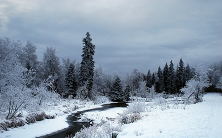 Winter Time - time, snow, winter, stream