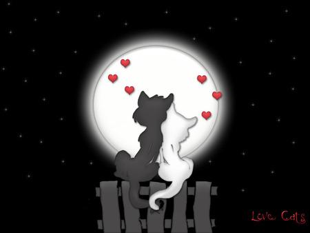 Love Cats Fantasy Abstract Background Wallpapers On Desktop Nexus Image 268645