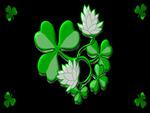 St Patricks 1