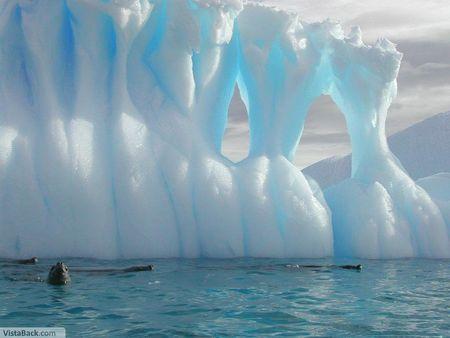 Real - Oceans u0026 Nature Background Wallpapers on Desktop