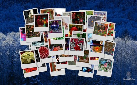 Tons of Christmas Scenes - snow, tons of pics for christmas, holiday, winter, christmas, blue, trees, xmas