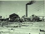 Saw Mill 1957