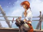 Pirate / Piratin