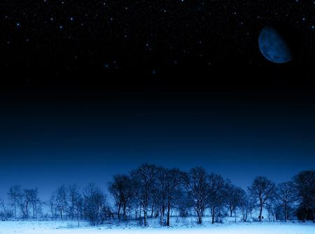 Obscure - customized, 3d and cg, trees, abstract, sky, winter, moon, snow, ice, obscure, nature, forests, white, frozen, blue, night