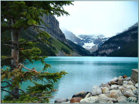 Lake Louise - alberta, louise, lake, canada, mountains, trees