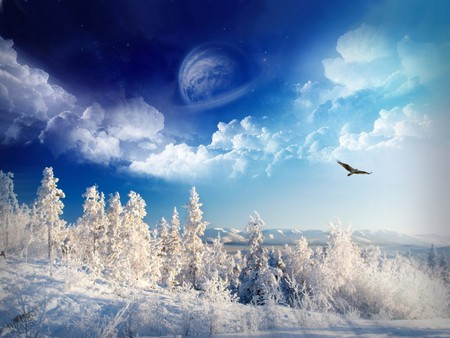 Comments On Blue Winter Fantasy Wallpaper Id 270396 Desktop