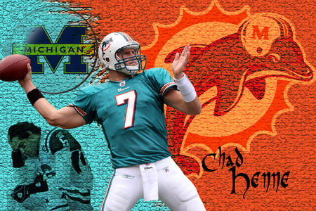 Chad Henne - miami dolphins, jets, 7, mark sanchez, football, michigan, chad henne, sports